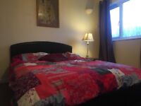 Conveniently located flat share / room to rent