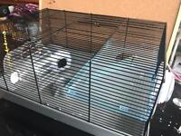 Large hamster house
