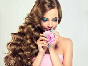 1 on 1 Russian Volume Eyelash Extension Course Northgate Port Adelaide Area Preview