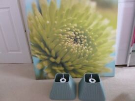 A new canvas print and matching table lamp shades, never used