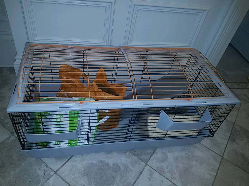 Very large rabbit or guinea pig hutch with extras