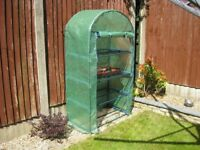 4 Tier Mini Greenhouse - Easy to Put Up & Take Down