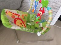 *Fisher Price Rainforest bouncer*