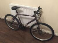 ADULT APOLLO MOUNTAIN BIKE