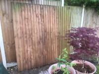 6x6 ft Treated Feather Edge Fence Panel