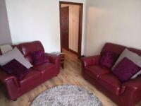 Two piece leather sofa set