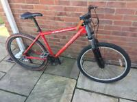 Carriea mountain bike red