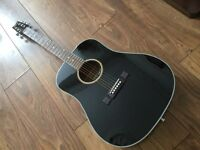 Washburn DS10B acoustic guitar, with carry case & accessories - mint condition (as new)