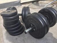 30kg dumbell weights set