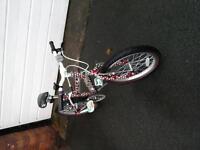 Kids Raleigh Krush Bike