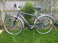 mens adult giant bicycle vgc - cash on collection