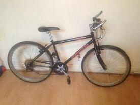 Men's Apollo mountain bike