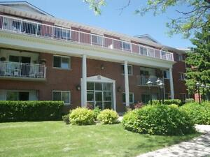 22 Greenwood Drive - Two Bedroom Apartment Apartment for Rent Stratford Kitchener Area image 3