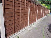 Garden fences x22 (6ftx6ft) EXCELLENT COND