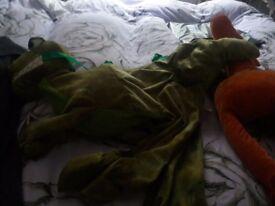Dressing up dinosaur