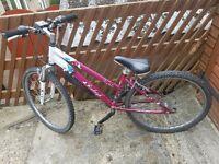 Bike big girl or ladies bike needs love