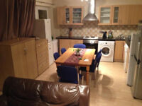 Nice single room available now in big flat, with garden and living room 10min walk to Barnes Tarin