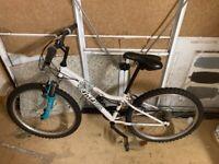 """Kids Mountain Bike. Apollo Vivid. 24"""""""
