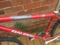 Raleigh Firefly