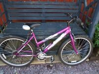 Ladies Freespirit mountain bike