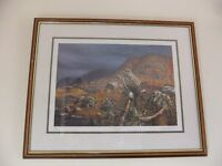 FRAMED PRINT OF A BUZZARD BY ARTIST ANDREW HUTCHINSON SIGNED IN EXCELLENT CONDITION ONLY £48