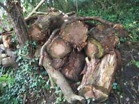 Wood/LOG