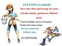 Cleaner and Housekeeping