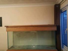 150cm vivarium with solid oak lid