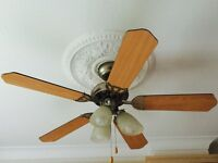Ceiling light and fan