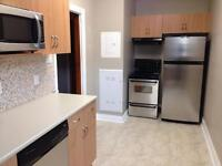 Spacious totally renovated 1 bedroom suite for rent - 435 Spence