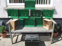 British Finch show cages,10 in total,goldfinch,bullfinch etc
