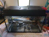 cheap Fish tank aquarium for sale