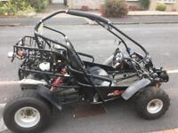 Pgo bug rider 250 road legal buggy
