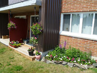 Timmins 2 Bedroom Apartment for Rent: Parking, laundry, elevator