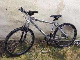Claud Butler Cape Wrath Mountain Bike