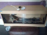 3ft reptile vivarium complete set up