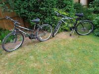 Mountain bikes (2) mens and ladies