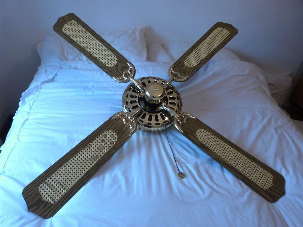 Fantasia Classic Ceiling Fan Buy Sale And Trade Ads