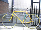 Beautiful Lightweight Single Speed Freewheel/not fixie, Serviced