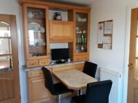 Kitchen or dining room Display and Storage cabinet