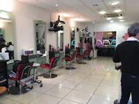 Hair stylist (senior) male/female