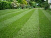 Garden equiptment wanted
