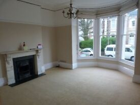 Top end, light, spacious one bed hall floor flat in Clifton - Full period features & no agency fees