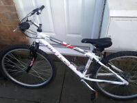 """X2 Bikes!!Claude Butler """"Oregon"""" mountain bike + Avigo """"spin"""" BMX"""