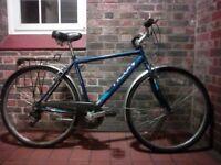 Raleigh Vermont Activ hybrid town bike city trekking Size Med (20in 51cm) mens unisex roadster + acc