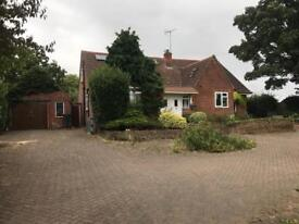 5 FIVE BEDROOM SHARED HOUSE FOR RENT EARLY NEAR READING LARGE ROOMS BILLS INCLUDED GARDEN PARKING