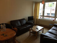 Double room in an amazing flatshare with bright living room-London - Canary wharf