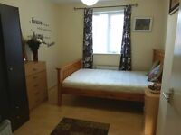 DOUBLE BEDROOM FOR A FEMALE- SHORT LETTING CAN BE CONSIDERED