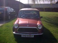 Austin Mini 1100 Special, Low mileage, excellent condition, 1979 For Sale
