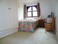 Great location, spacious room in Contemporary house(Camden Town)